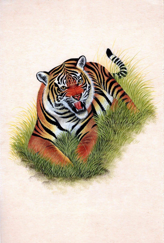 India Wild Tiger Miniature Art Handmade Watercolor Ethnic Animal Paper Painting