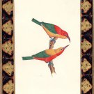 Indian Nature Bird Painting Handmade Miniature Ornithology Ethnic Wall Decor Art