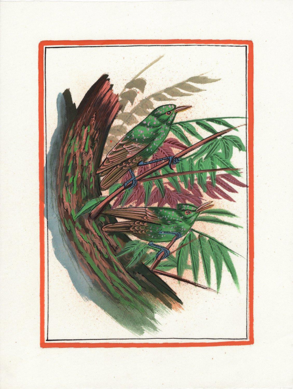 Indian Miniature Bird Painting Handmade Watercolor Ethnic Folk Decor Silk Art