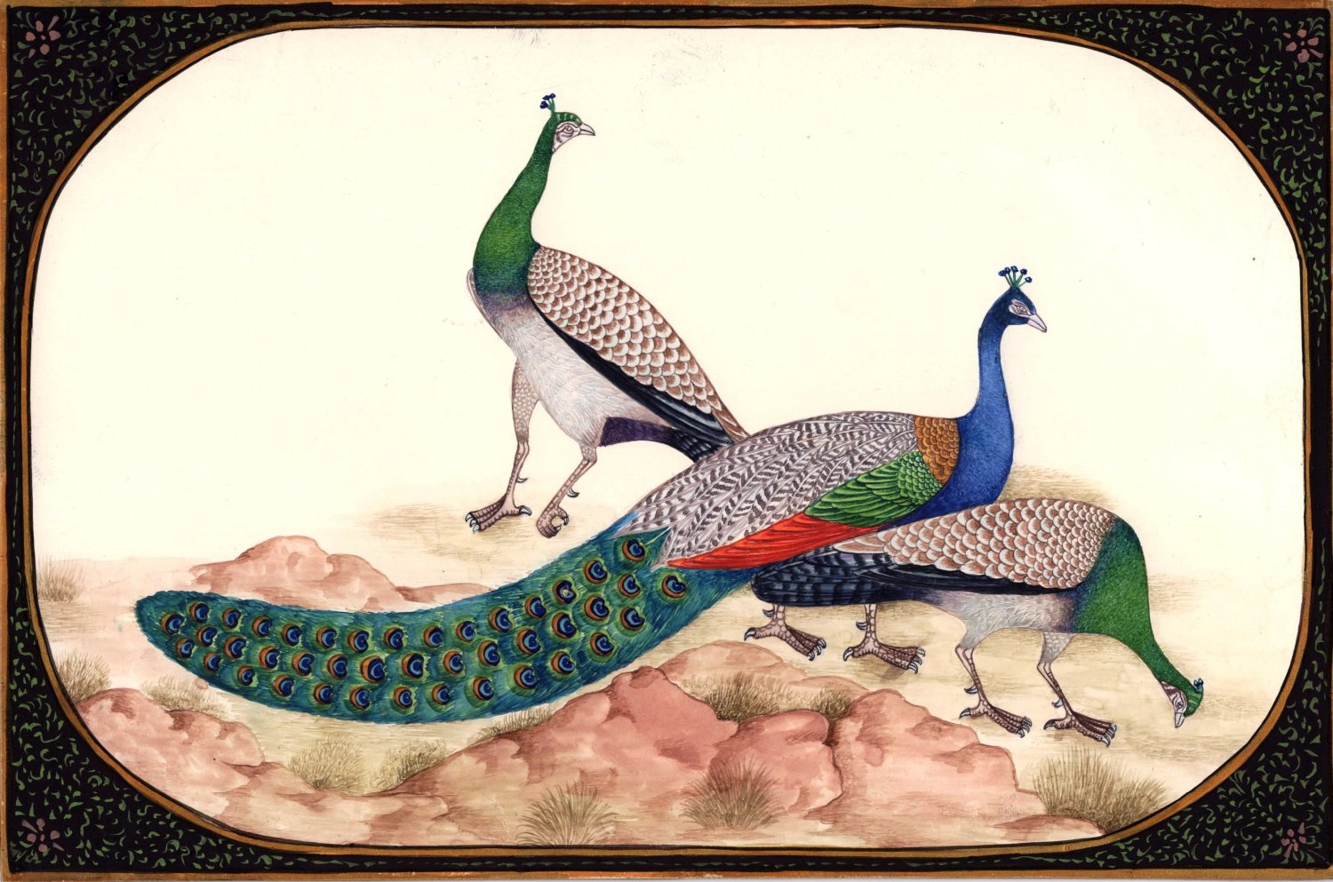 Peafowl Peacock Indian Art Handmade Miniature Nature Bird of Paradise Painting