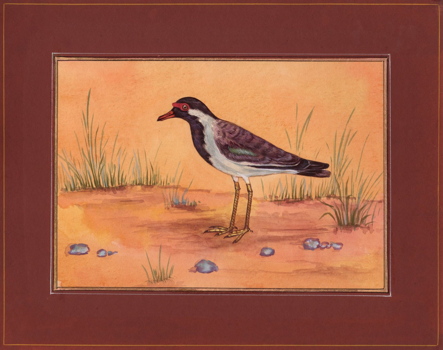 Red Wattled Lapwing Bird Miniature Painting Handmade Indian Watercolor Paper Art