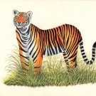 Royal Bengal Tiger Handmade Art Grand Indian Miniature Wild Cat Animal Painting