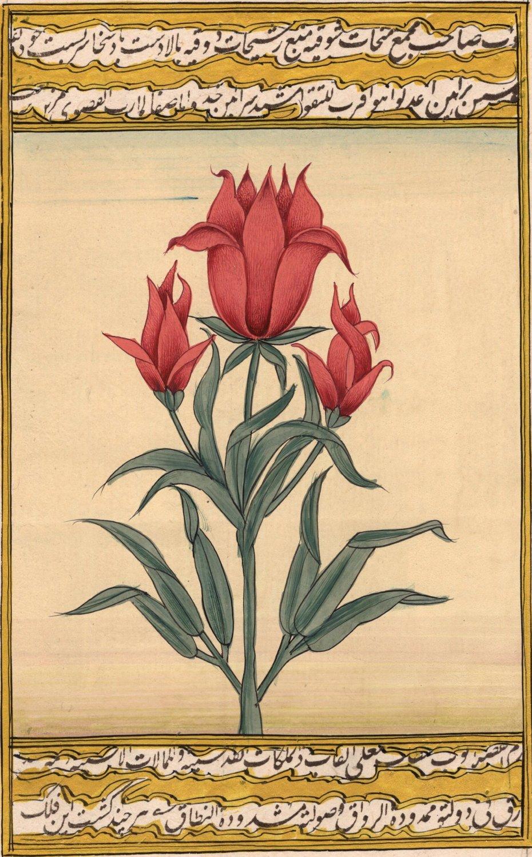 Indian Miniature Floral Painting Handmade Mughal Flower Islamic Script Tulip Art
