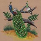 Indian Peacock Painting Handmade Watercolor Miniature Nature Bird Wild Life Art