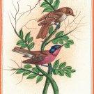 Bird Painting Handmade Watercolor Indian Miniature Ethnic Folk Decor Silk Art