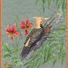 Blond Crested Woodpecker Bird Painting Handmade India Miniature Nature Decor Art