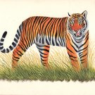 Royal Bengal Tiger Painting Handmade Watercolor Miniature Indian Wild Animal Art