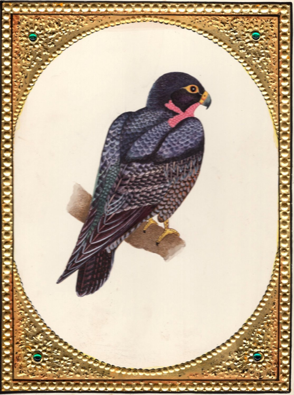 Bird of Prey Hawk Painting Handmade Indian Miniature Watercolor Ornithology Art