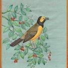 Hooded Warbler Painting Handmade Indian Miniature North American Wild Bird Art
