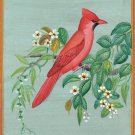 Cardinal USA State Bird Painting Handmade Indian Miniature Wild Life Nature Art