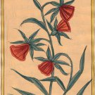 Mughal Flower Miniature Painting Handmade Indian Moghul Decor Tulip Floral Art