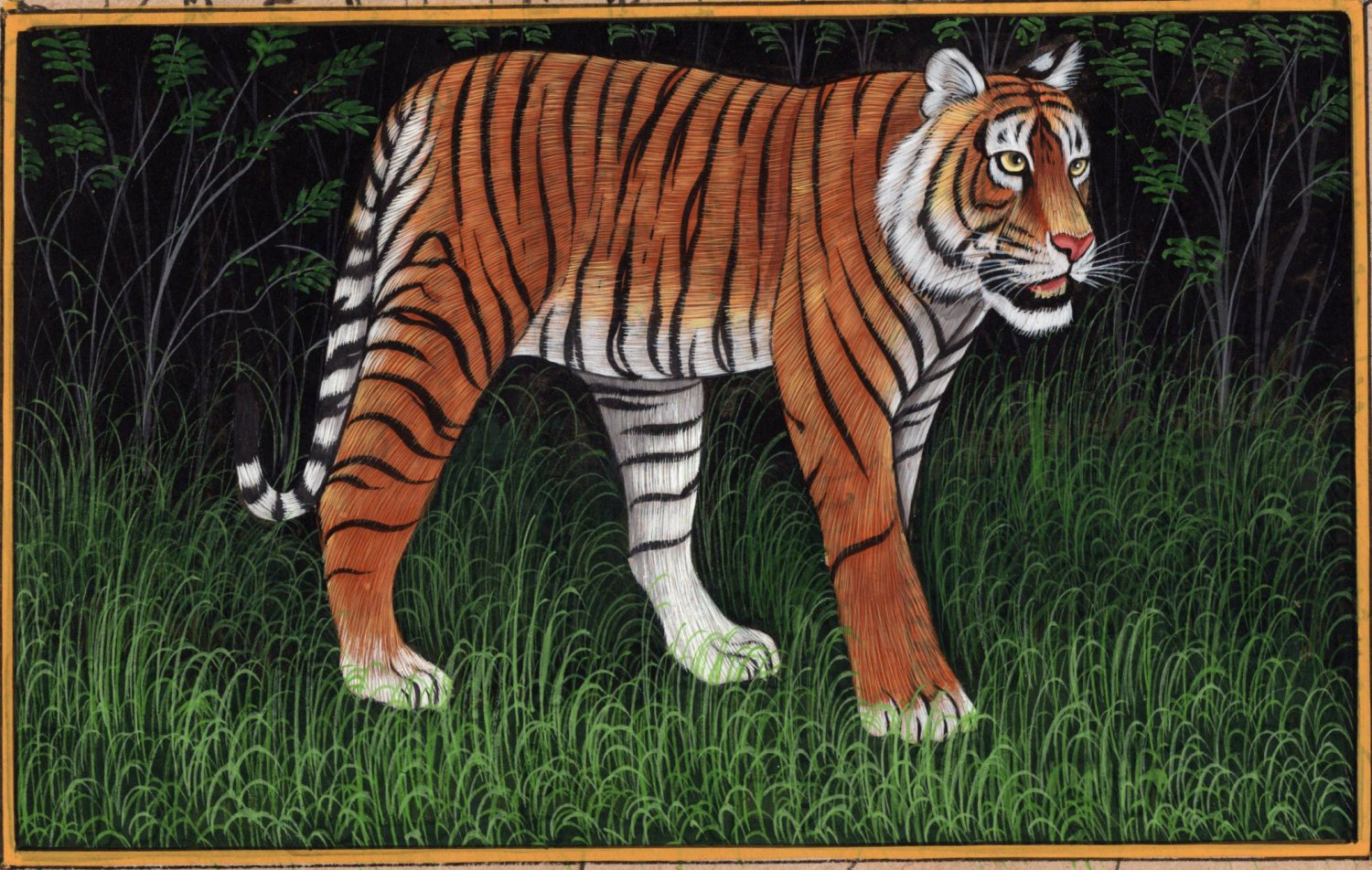 India Tiger Art Handmade Watercolor Miniature Wild Cat Animal Paper Painting
