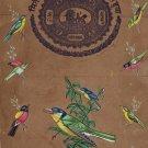 Indian Bird Miniature Art Handmade Old Stamp Paper Nature Ornithology Painting
