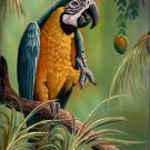 Peru Blue and Yellow Macaw Painting Handmade South American Nature Bird Art