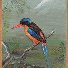 Paradise Kingfisher Bird Painting Handmade Wild Feathered Indian Miniature Art