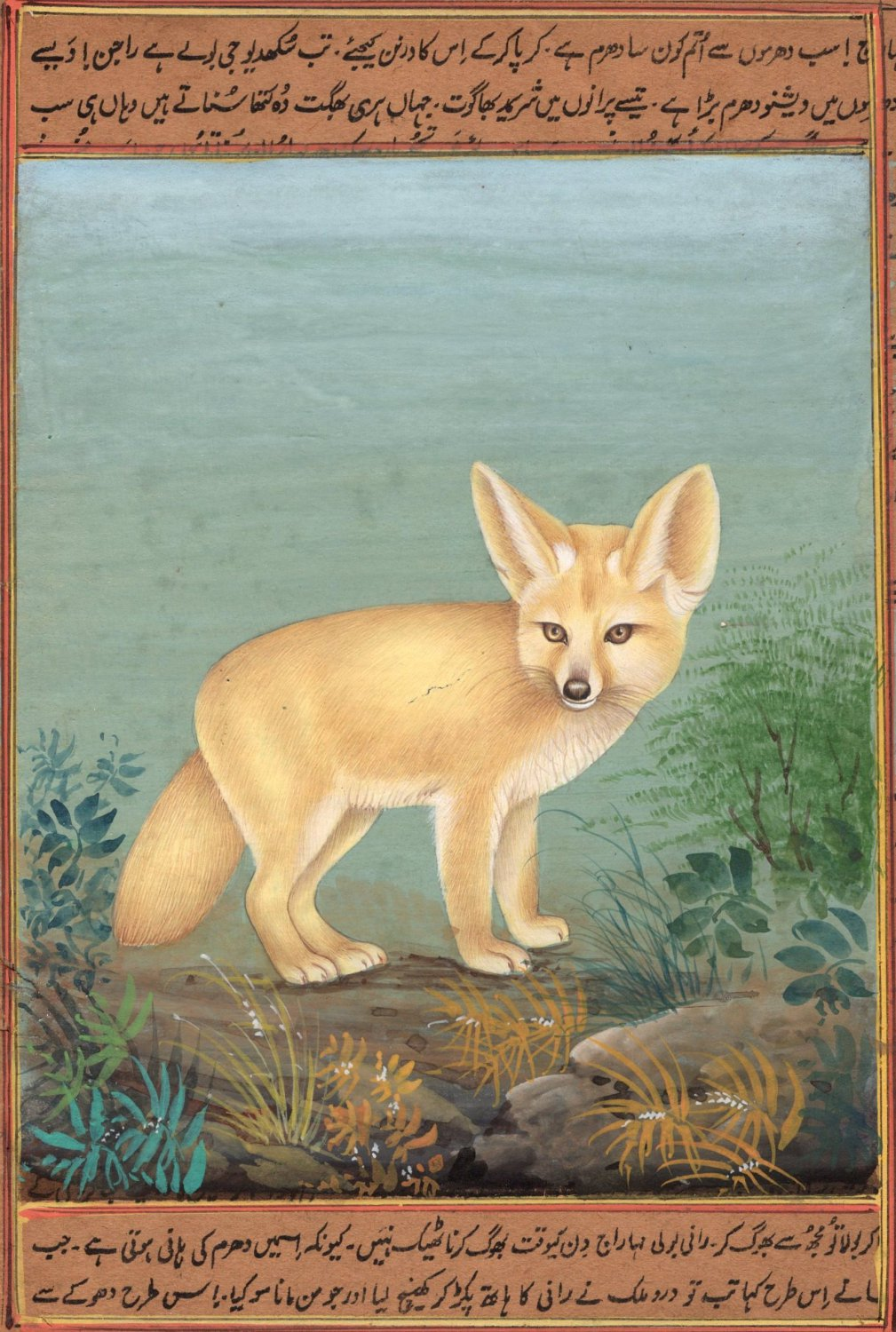 Indian Miniature Painting Handmade Fennec Fox Animal Watercolor Wild Life Art