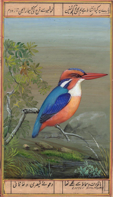 Little Kingfisher Bird Painting Handmade Ornithology Nature Indian Miniature Art