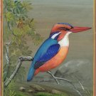 Little Kingfisher Bird Painting Handmade Ornithology Nature Indian Miniature Art