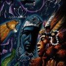 Peruvian Cuzco Art Handmade Oil on Velvet Peru Sacred Animal Inca King Painting