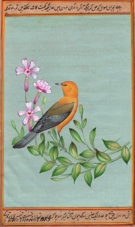 Prothonotary Warbler Bird Art Handmade Indian Miniature Ornithology Painting