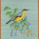 Common Tody Flycatcher Bird Art Rare Handmade Indian Miniature Nature Painting