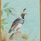 California Quail Bird Painting Rare Handmade Indian Miniature Nature Decor Art