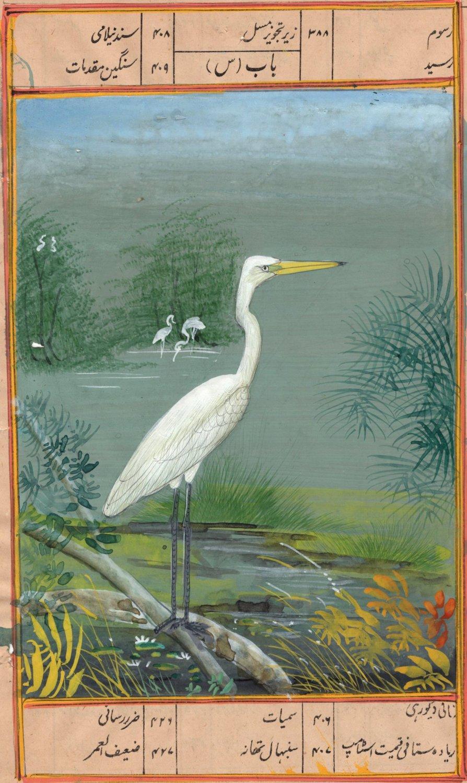 India Miniature Painting Handmade Painted Egret Bird Watercolor Wild Life Art