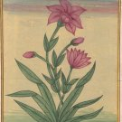 Mughal Flower Miniature Painting Handmade Floral Moghul Islamic Script Paper Art