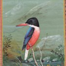 Indian Miniature Art Handmade Black Headed Kingfisher Wild Life Bird Painting