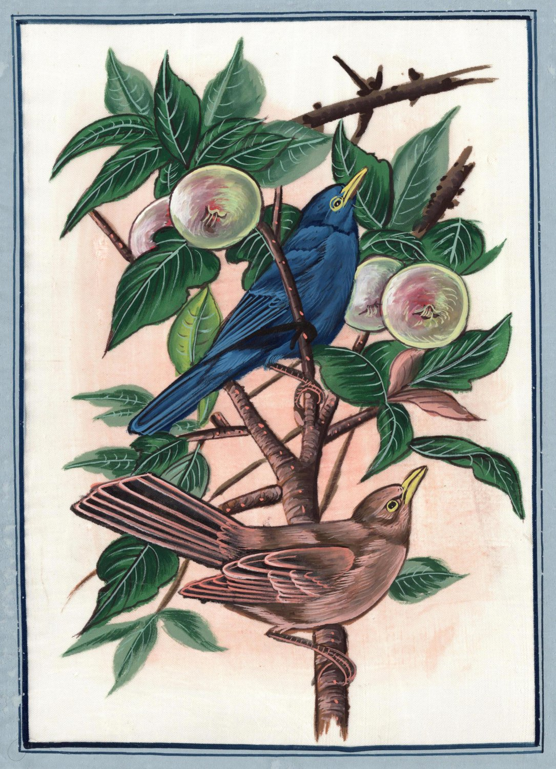 Bird Fruit Nature Art Handmade Indian Watercolor Silk Miniature Decor Painting