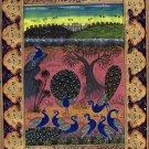 Peacock Bird Miniature Painting Handmade Islamic Nature Ethnic Indo Persian Art