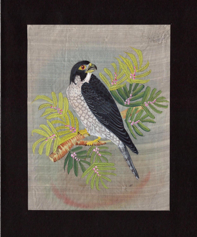 Indian Falcon Miniature Art Handmade Bird of Prey Miniature Nature Painting