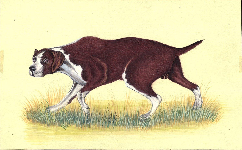 Hunting Dog Miniature Painting Handmade Indian Canine Nature Animal Decor Art