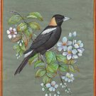 Bobolink Nature Painting Handmade Indian Miniature North American Wild Bird Art