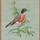 American Robin USA State Bird Painting Handmade Indian Miniature Nature Wall Art