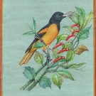 Northern Baltimore Oriole Bird Painting Handmade Indian Miniature Nature Art