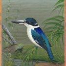 Indian Miniature Forest Kingfisher Bird Painting Rare Handmade Ethnic Nature Art