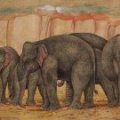 Indian Elephant Painting Handmade Nature Wild Life Animal Decor Miniature Art