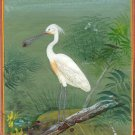 Spoonbill Bird Painting Indian Miniature Nature Handmade Ethnic Watercolor Art