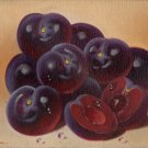 Peruvian Plum Fruit Painting Handmade South American Acrylic Canvas Nature Art