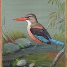 Indian Miniature Grey Headed Kingfisher Bird Art Handmade Ethnic Nature Painting