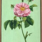 Indian Mughal Pink Rose Flower Miniature Painting Floral Handmade Ethnic Art