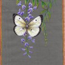 Butterfly Indian Nature Painting Handmade Watercolor Miniature Wild Life Art