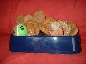 Dog Biscuit w/Bowl & Toy