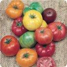 Heirloom Tomato Rainbow Mix ~ Seeds