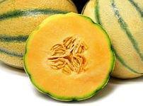Tuscan-Style Cantaloupe Seeds - Rare Italian Melon