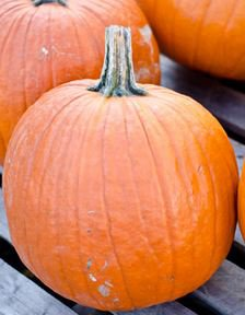 Triple Treat Pumpkin Seeds - Awesome for Seeds, Pie & Carving