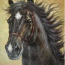 Modern Handicraft oil painting on canvas-Horse No.162