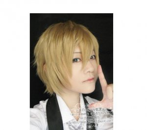 HOT SELL! New fashion Short Dark Blonde cosplay party Wig