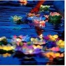 10×8 COLOR FLOWER lotus chinese lanterns wishing floating water light paper